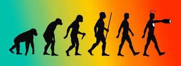 The story of Adam confirms evolutionary origin of humans